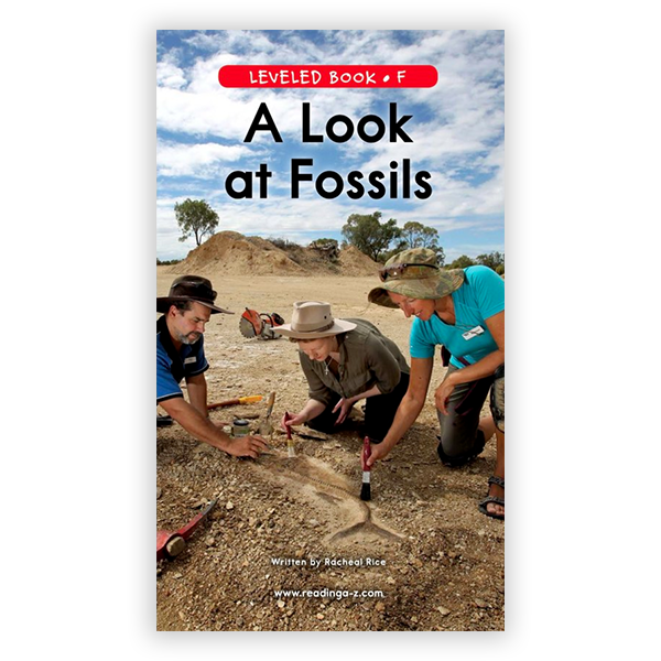 A Look At Fossils