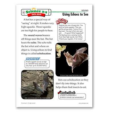 Science A-Z bats themed Quick Read