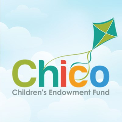 Chico Children's Endowment Grant Application