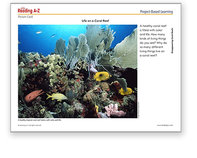 Coral Reef Project-Based Learning Pack in Raz-Plus