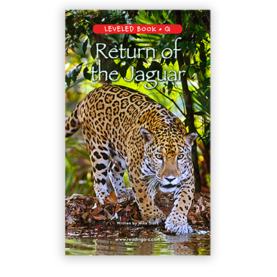Return of the Jaguar
