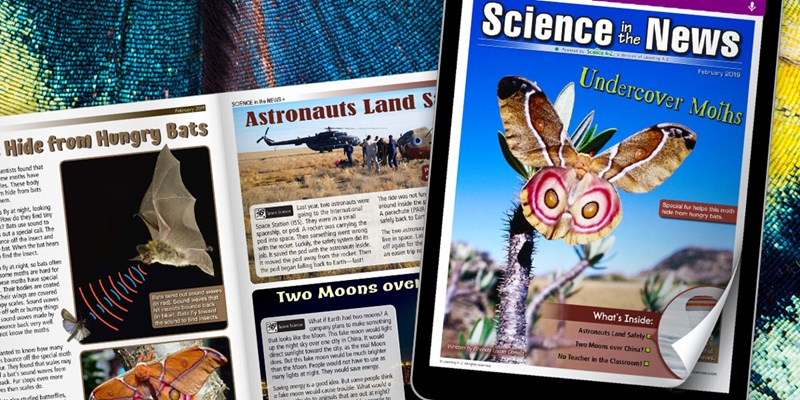 Science in the News for February 2019