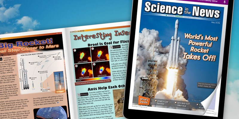 May 2018 Issue of Science in the News