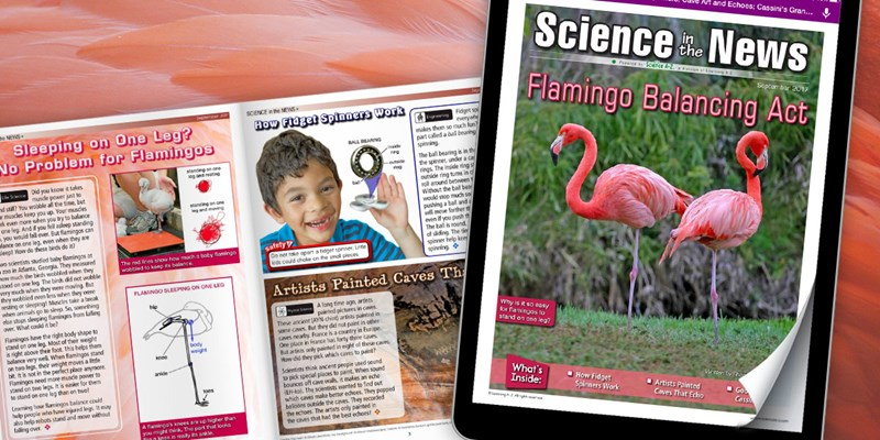 September 2017 Science in the News