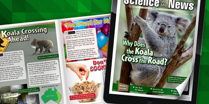 Explore the October Issue of Science in the News