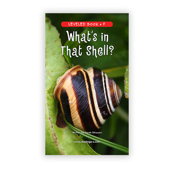 What's in That Shell?